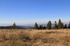 Den panorama- hösten beskådar av Gorce berg i Polen Royaltyfria Foton