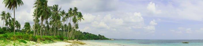 Den panorama- tropiska stranden med kokosnöten gömma i handflatan och vit sand arkivfoto