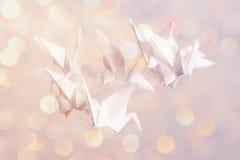 Pappers- magisk origami Fotografering för Bildbyråer