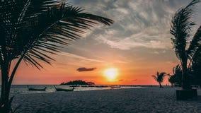 Den Paradise ön Crystal Clear Sea som är blå, gömma i handflatan, på fyre royaltyfri bild