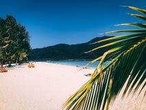 Den Paradise ön Crystal Clear Sea som är blå, gömma i handflatan, på fyre royaltyfria foton