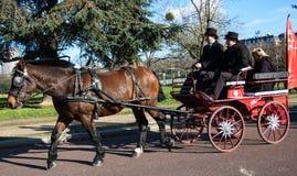 Den Paris hästen ståtar Royaltyfri Bild