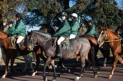 Den Paris hästen ståtar Fotografering för Bildbyråer