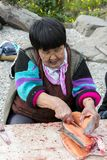 Den pensionärChukchi kvinnan förbereder laxen royaltyfria bilder