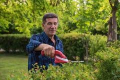 Den pensionerade mannen klipper den gröna häcken Royaltyfri Bild