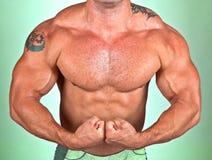 Den perfekta muskulösa male modellen arkivbild