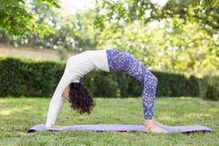 Den perfekta unga kvinnan som sträcker i en gräsplan, parkerar Sund flicka i en yogaposition Asana övning Zen harmoni, jämviktsbe Royaltyfria Foton