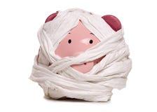Den piggy mamman packar ihop Royaltyfri Bild