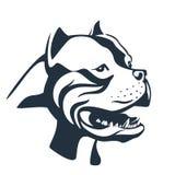 Den Pitbull hunden skissar på vit Arkivbild