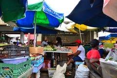 Den pittoreska ön av St Lucia i västra indies Royaltyfri Foto