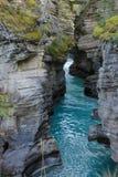 Den pittoreska athabascaen faller floden Kanada Arkivbilder