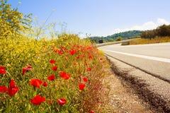 Den pittoreska vägen i Tuskany omgav vid vallmofält Fotografering för Bildbyråer