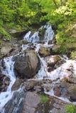 Den pittoreska vattenfallet med vaggar i lösa trän Arkivfoton