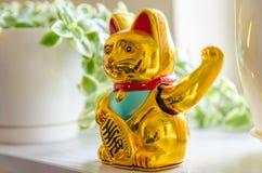 Den plast- katten vinkar det handen för ` s Royaltyfria Foton