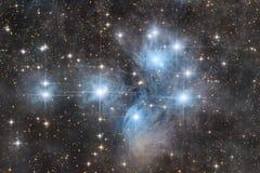 Den Pleiades klungan arkivbilder