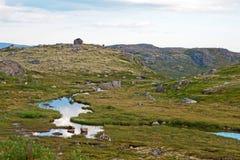 Den polara sommaren landskap med den små floden Arkivfoton