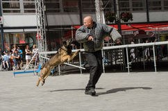 Den policie Brno Royalty Free Stock Photography