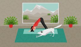 Den praktiserande yogan för ung kvinna Den vita hunden som sträcker sig i samma, placerar Nedåt - vända mot hunden posera - Adho  Royaltyfria Bilder