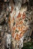 Den Preshistoric petroglyphen vaggar målningar i Raja Ampat, västra Papua, Indonesien Arkivfoto