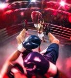 Den Professionl boxaren gör hård knokout arkivfoton