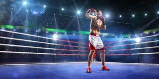Den Professionl boxaren står på cirkeln Royaltyfria Foton