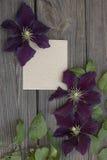 Den purpurfärgade klematins blommar på gammalt papper royaltyfri bild