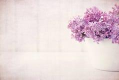 Den purpurfärgade lila våren blommar på tappning texturerad bakgrund Royaltyfri Fotografi