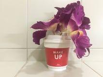Den purpurfärgade orkidén blommar i rött murbrukexponeringsglas och den vita textvaken arkivbild