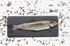 Den rå forellfisken kritiserar på brädet med pepparkorn Royaltyfria Bilder