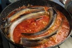 Den rå lyrtorskfisken lagas mat i en kastrull med närbild för tomatsås fotografering för bildbyråer