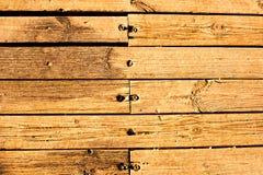 Den rå naturliga wood plankan med spikar Royaltyfri Bild