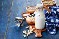Den rå strikt vegetariankasjun mjölkar Royaltyfria Foton