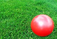 Den röda bollen ligger på det gröna gräset arkivbilder