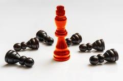 Den röda bränningkonungen och många stupat pantsätter - schackbegrepp Royaltyfria Foton