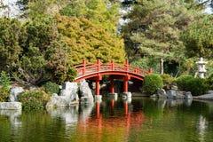 Den röda bron över en man gjorde dammet, den japanska kamratskapträdgården, San Jose, San Francisco Bay område, Kalifornien fotografering för bildbyråer