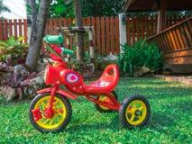 Den röda cykeltrehjulingen i trädgården parkerar hemmastatt signalljusljus för lekplatsen - grönt gräs royaltyfri bild