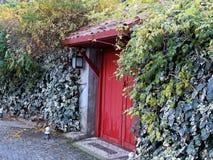 Den röda dörren Arkivbilder