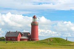 Den röda fyren Bovbjerg Fyr med grönt gräs och blå himmel, J Arkivbild
