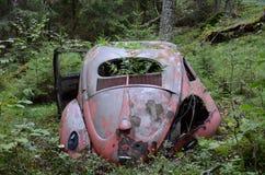Glöm din bil??? Fotografering för Bildbyråer