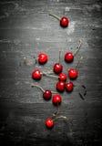 Den röda körsbäret Arkivfoton
