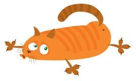 Den röda katten ligger på buken Royaltyfria Bilder