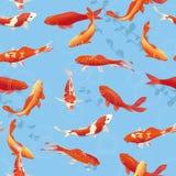 Den röda koien fiskar i dammet royaltyfri illustrationer