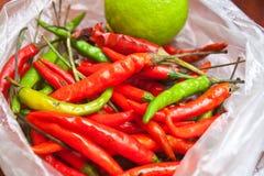 Den röda och gröna chili i plastpåsen Royaltyfri Fotografi