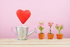 Den röda omkullkastade chokladhjärtapinnen med litet bevattna för silver kan och kortkortet fejka blomman i brun växtkruka på trä arkivbild