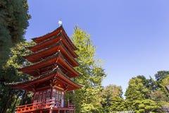 Den röda pagoden och träd i en japan arbeta i trädgården Royaltyfri Bild
