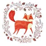 Den röda räven Royaltyfri Bild