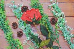 Den röda rosen, blommor, sörjer kottar, hjärta på träbakgrund arkivbild
