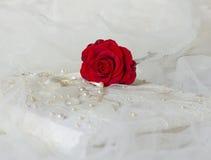 Den röda rosen lägger på ett fotoalbum Royaltyfri Foto