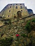 Den röda rosen, vaggar och abbotskloster royaltyfria foton