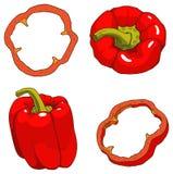 Den röda spanska pepparen med skivor Arkivfoto